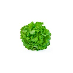 Salade pièce - France