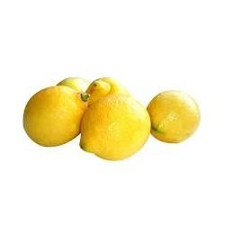 Citrons x3 - Espagne