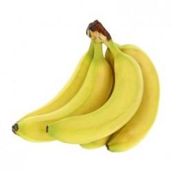 Bananes des Canaries x5 -...